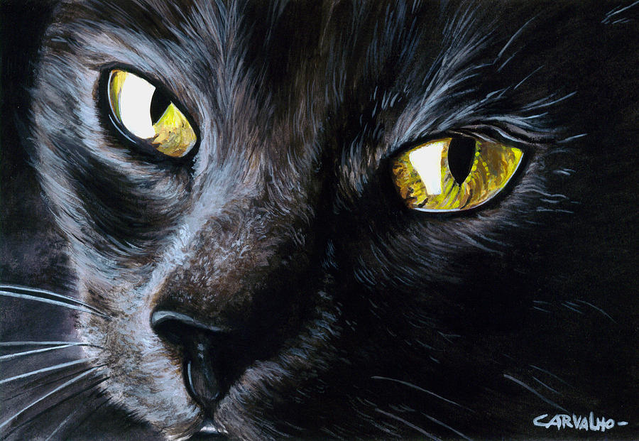 Cat Painting - An Old Friend by Daniel Carvalho