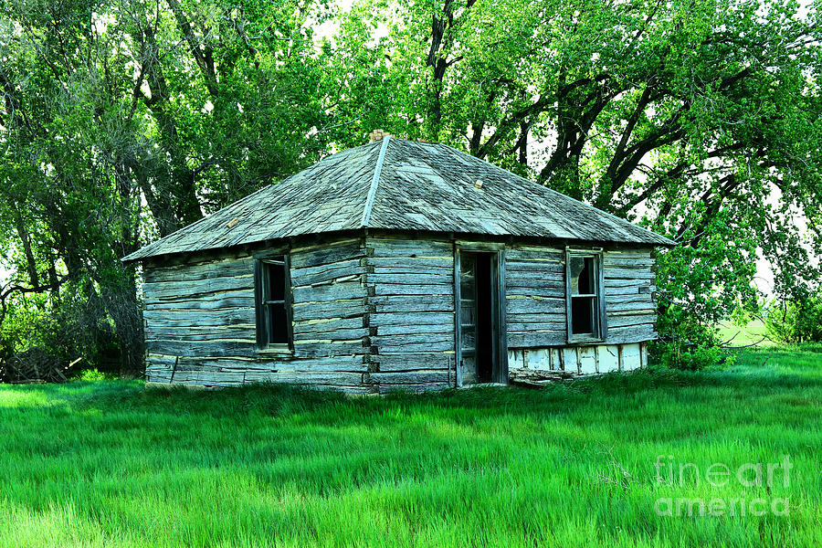 An Old Log Cabin Photograph