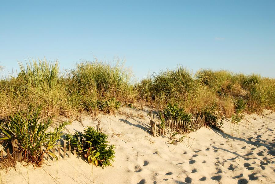 Jersey Shore Photograph - An Opening In The Fence - Jersey Shore by Angie Tirado