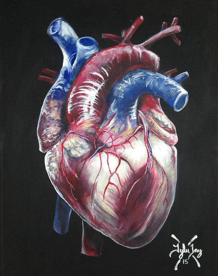 Anatomical Heart Painting By Tyler Haddox
