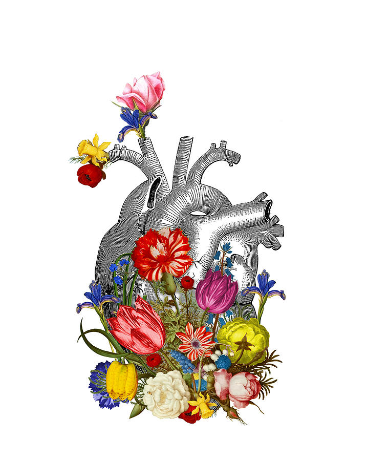 Heart Digital Art - Anatomical Heart With Colorful Flowers by Madame Memento