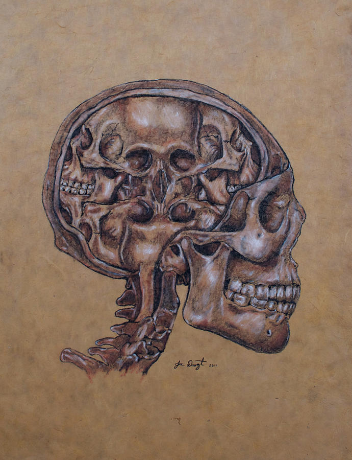 Anatomy Drawing - Anatomy Of A Schizophrenic by Joe Dragt