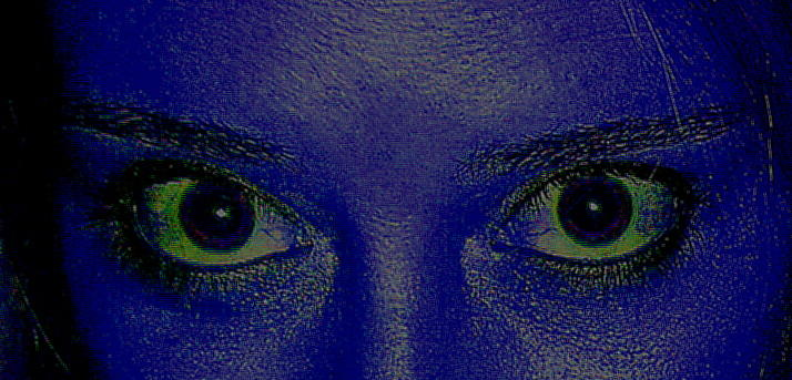 Anatomy Of The Eyes Photograph by Debbie May