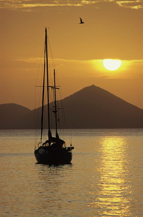 Bird Photograph - Anchored Ketch And Sunset Over Caribbean by Don Kreuter
