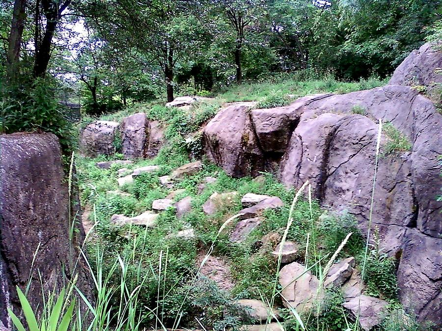 Rocks Photograph - Ancient Creek Bed by Alan Redhorse