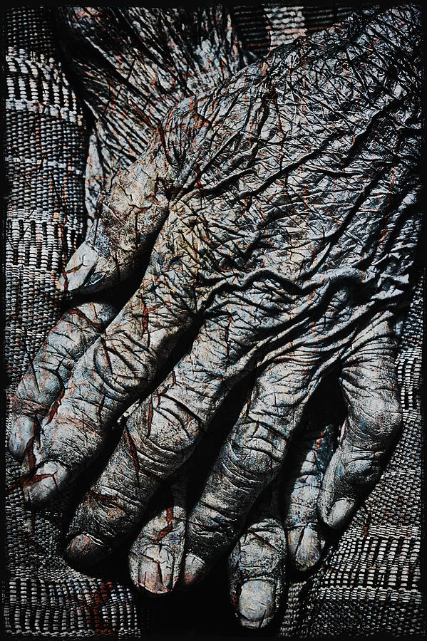 Asia Photograph - Ancient Hands by Skip Nall