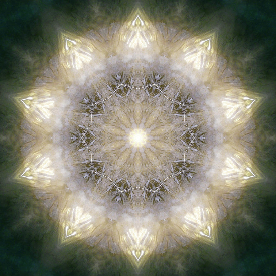 Mandala Photograph - Ancient Light X by Lisa Lipsett