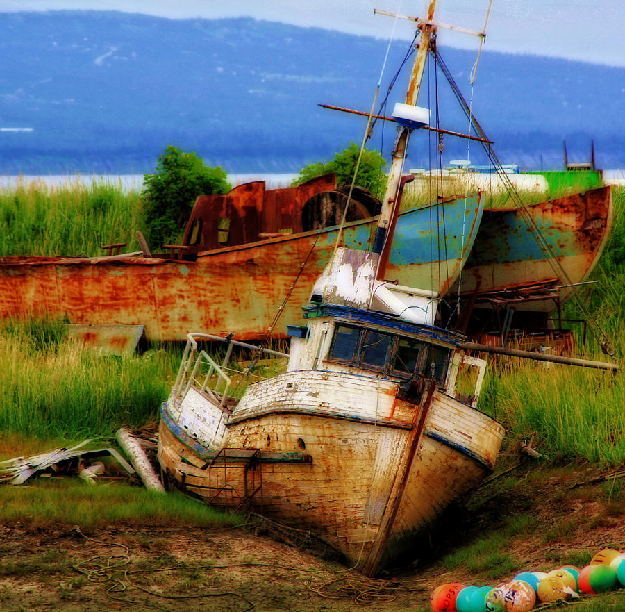 Boat Photograph - Ancient Mariner by Donna Cain