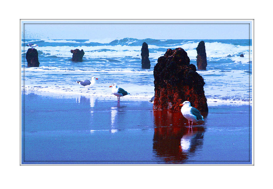 Ancient Trees Photograph - Ancient Trees And Seagulls At Neskowin Beach by Margaret Hood