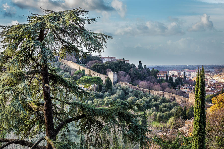 Ancient Walls of Florence by Sonny Marcyan