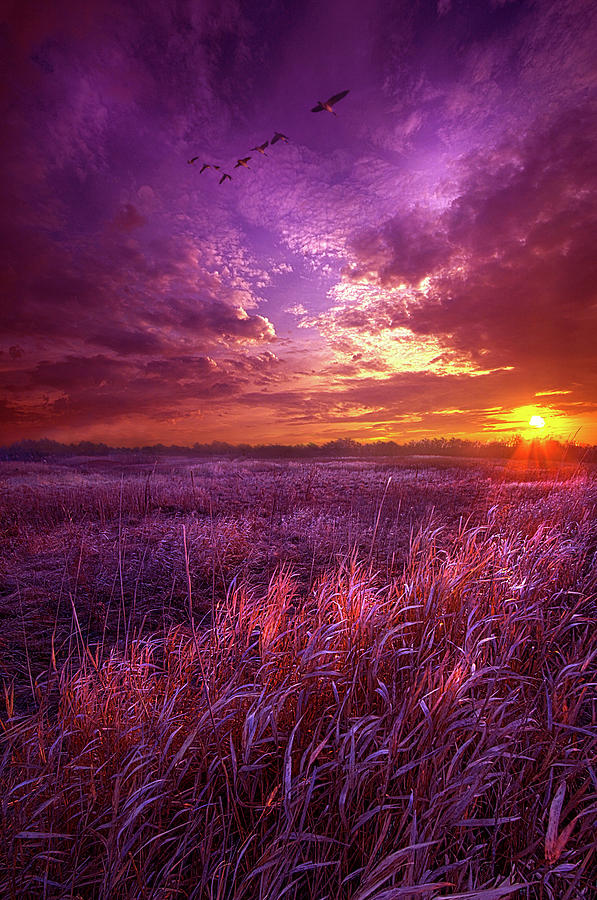 Travel Photograph - And I Dreamt Of Waking by Phil Koch