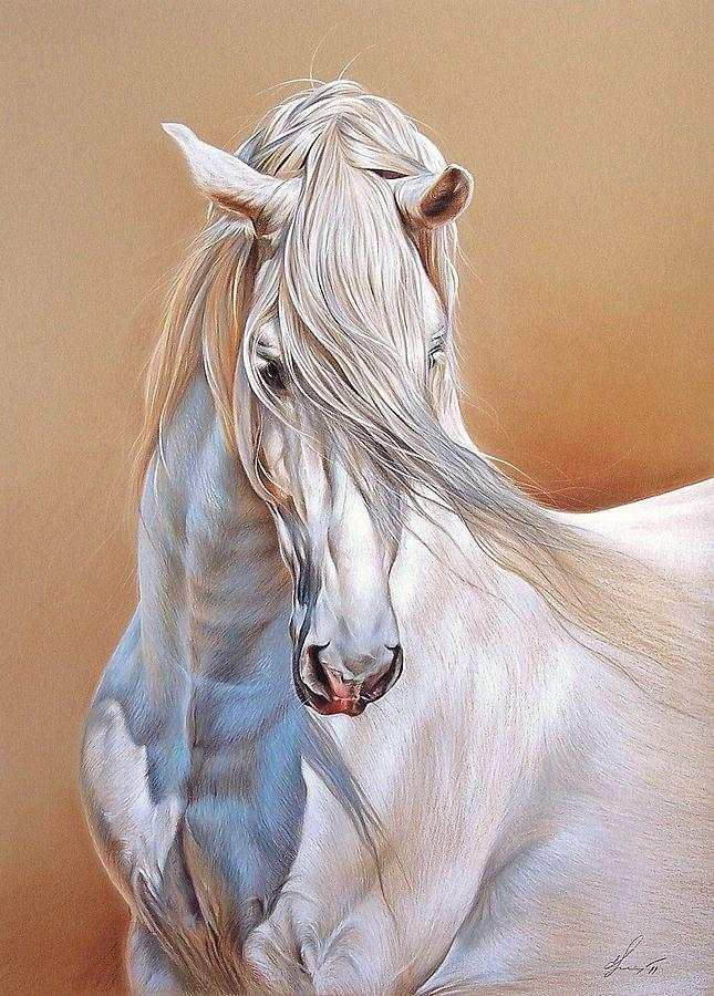 Andalusian Drawing - Andalusian by Elena Kolotusha