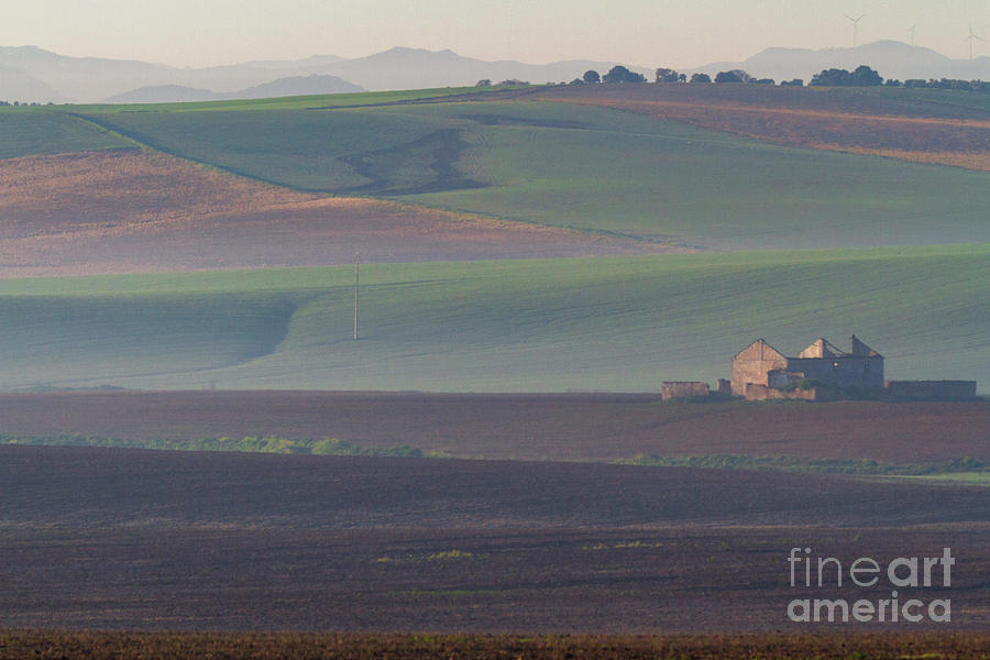 Andalusian Fields In Morning Mists Photograph