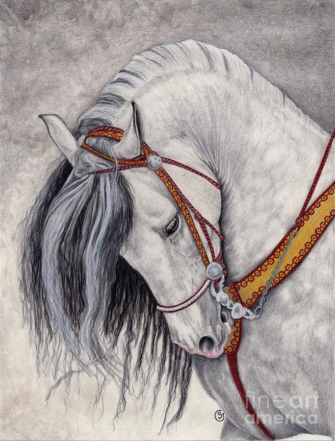Horse Painting - Andalusian - Spanish Beauty by Sherry Goeben
