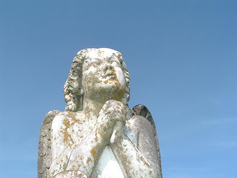 Angel Photograph - Angel by Amanda Shelburne