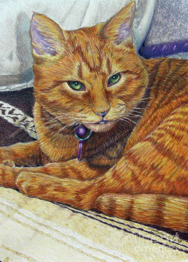 Cat Drawing - Angel by Beverly Fuqua