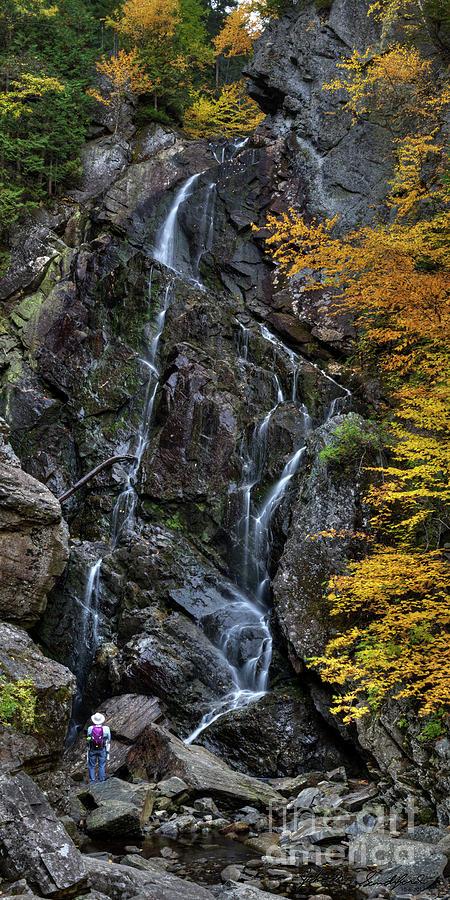 Angel Falls by John Sandiford