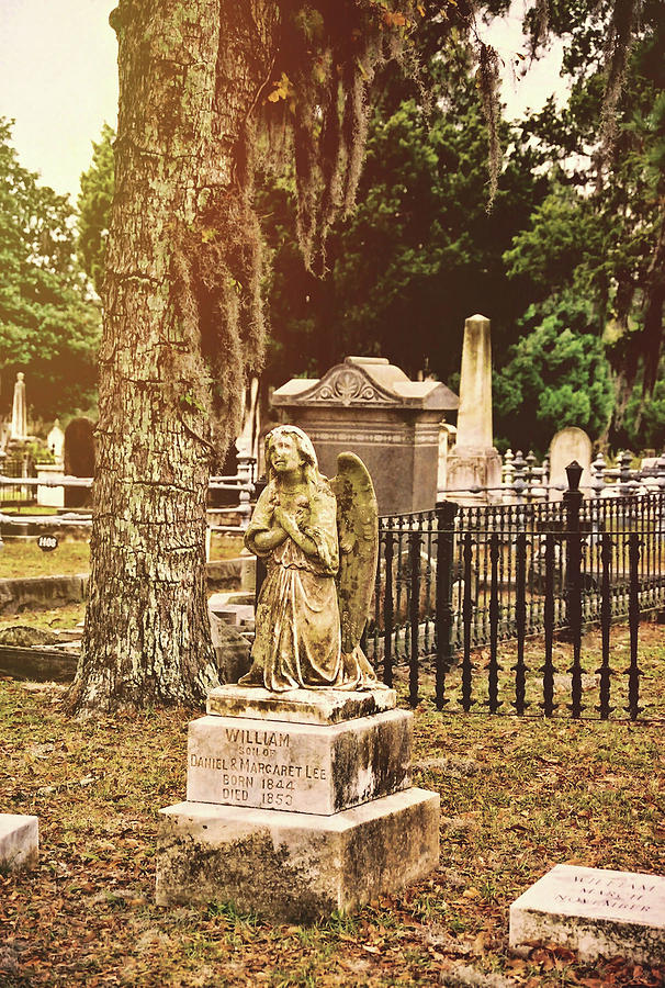 Cemetary Photograph - Angel In Stone by JAMART Photography