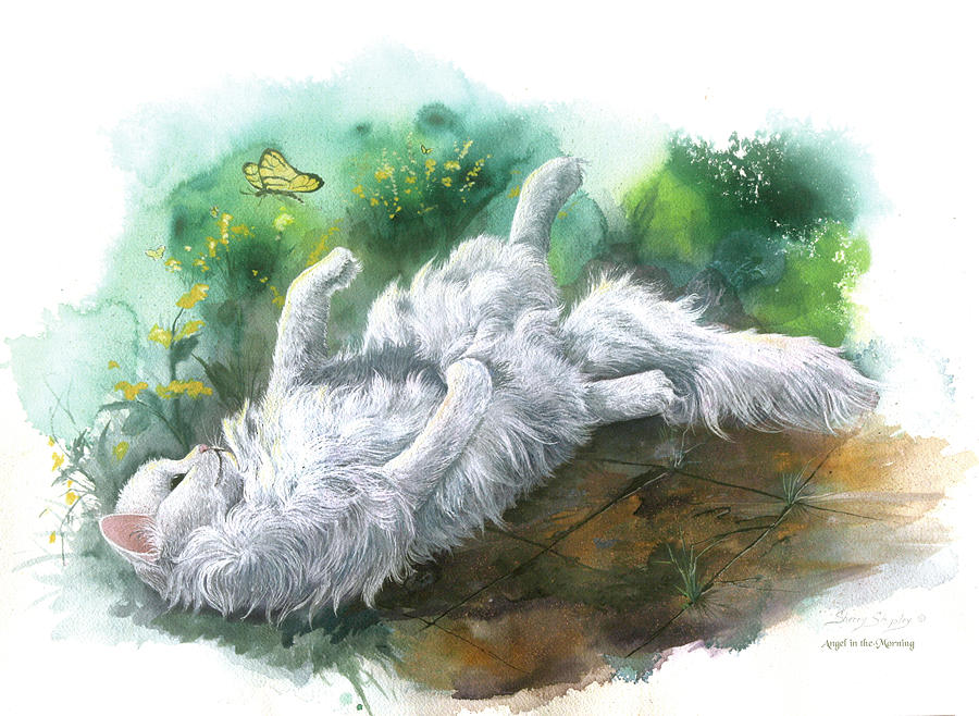 Cat Painting - Angel In The Morning by Sherry Shipley