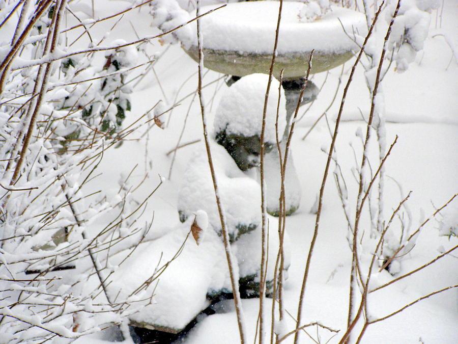 Angel Photograph - Angel In The Snow by Christine Sullivan Cuozzo