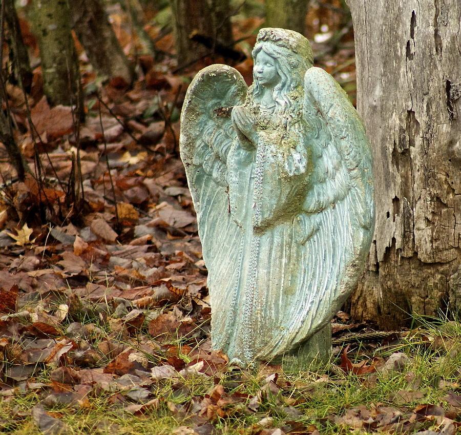 Angel Photograph - Angel In The Woods by Danielle Allard