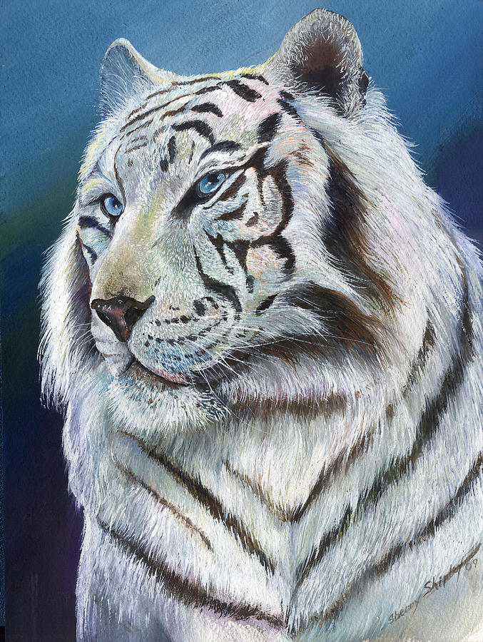 Big Cat Painting - Angel The White Tiger by Sherry Shipley