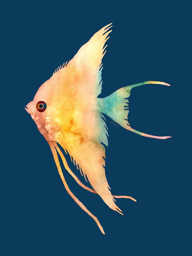 Fish Painting - Angelfish II - solid background by Hailey E Herrera