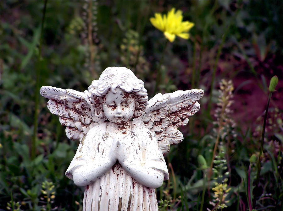 Angel Photograph - Angelic by Karen Scovill
