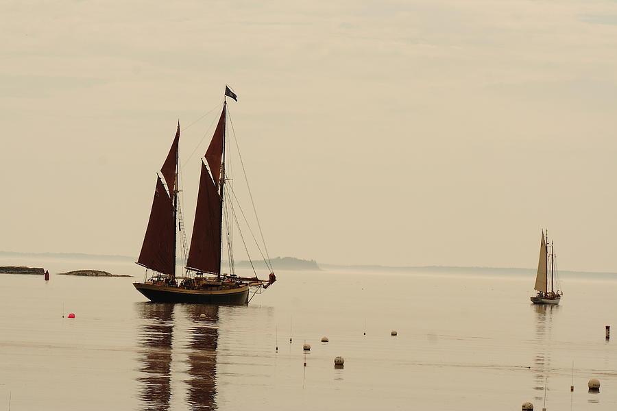 Seascape Photograph - Angelique Leaving Camden by Doug Mills