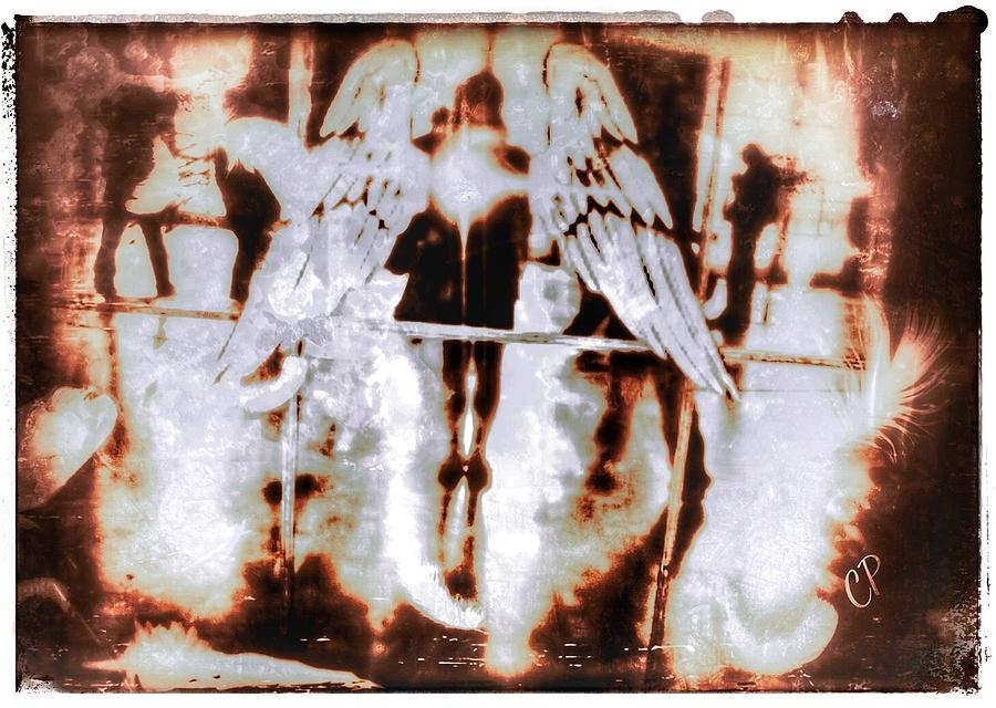 Angels In the mirror by Christine Paris