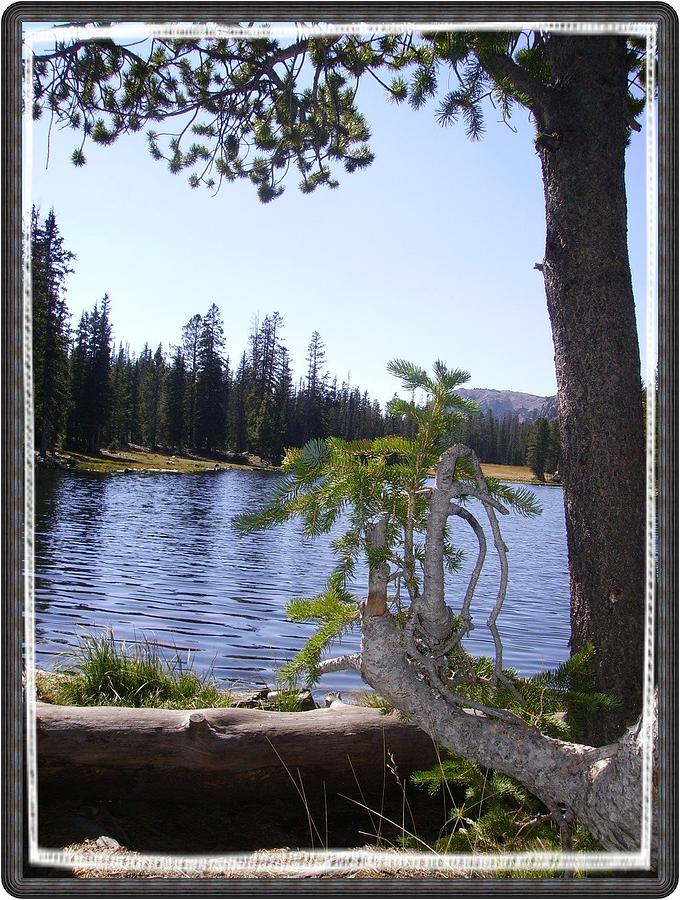 Landscape Photograph - Angels Point Of View Butterfly Lake by Janet Gioffre Harrington