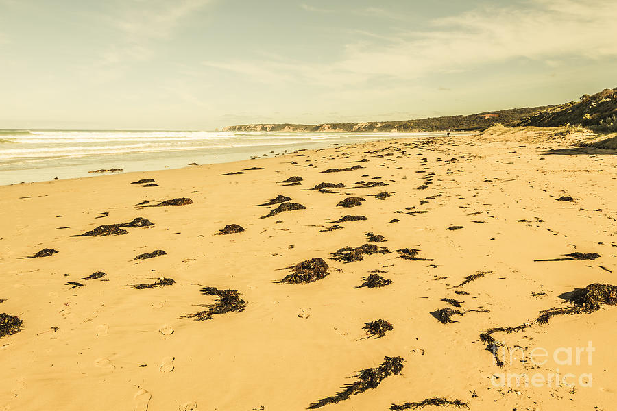 Victoria Photograph - Anglesea Landscape by Jorgo Photography - Wall Art Gallery