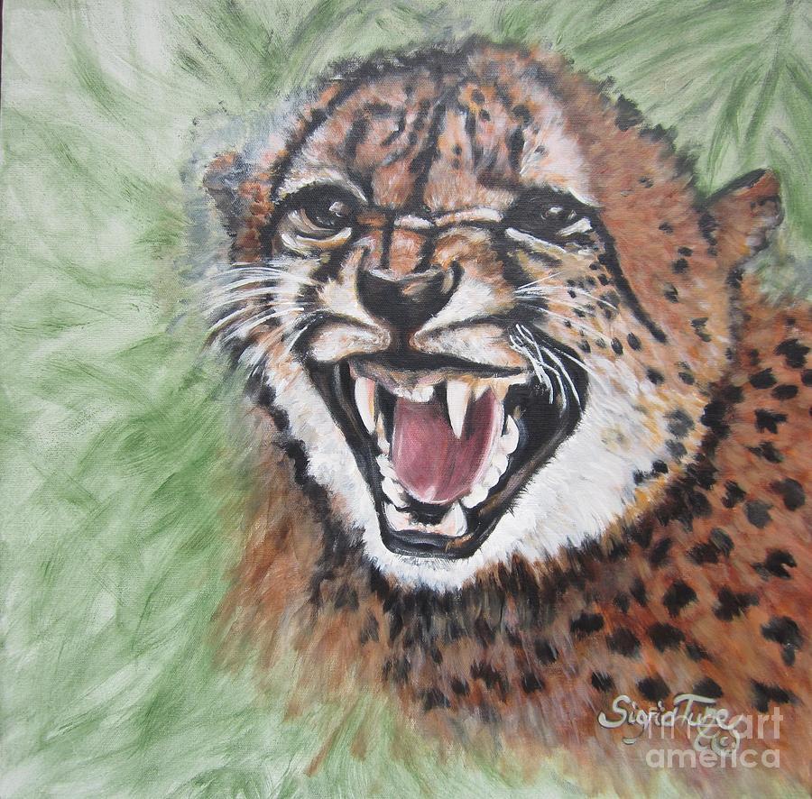 angry baby cheetah - photo #6