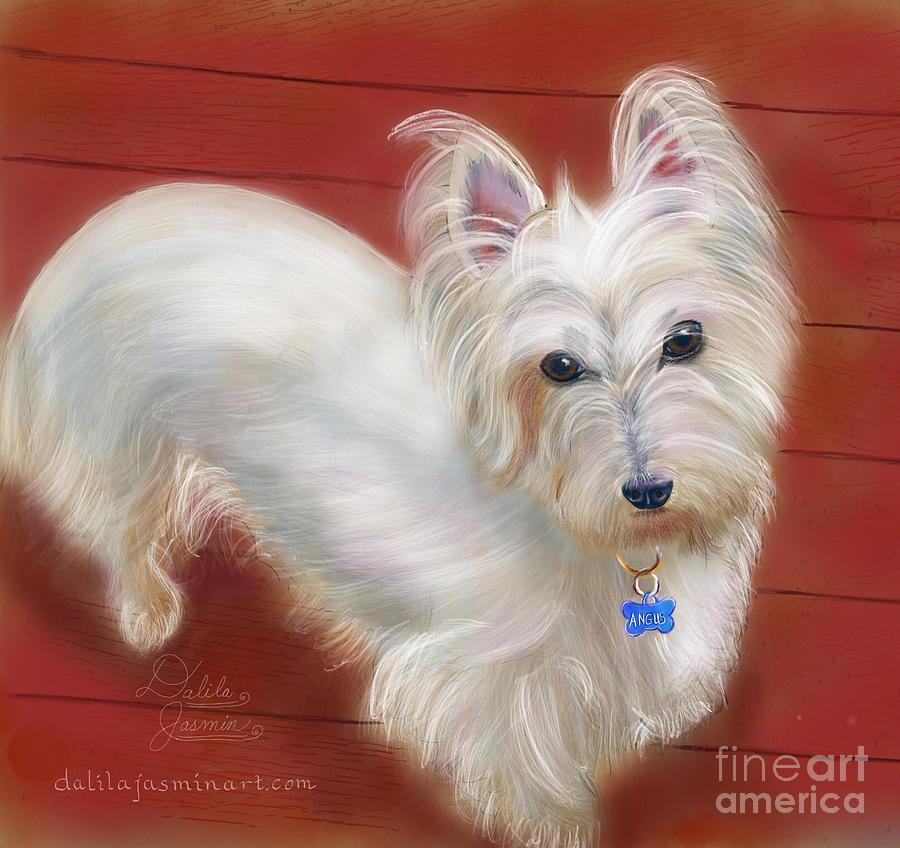 Dog Digital Art - Angus by Dalila Jasmin