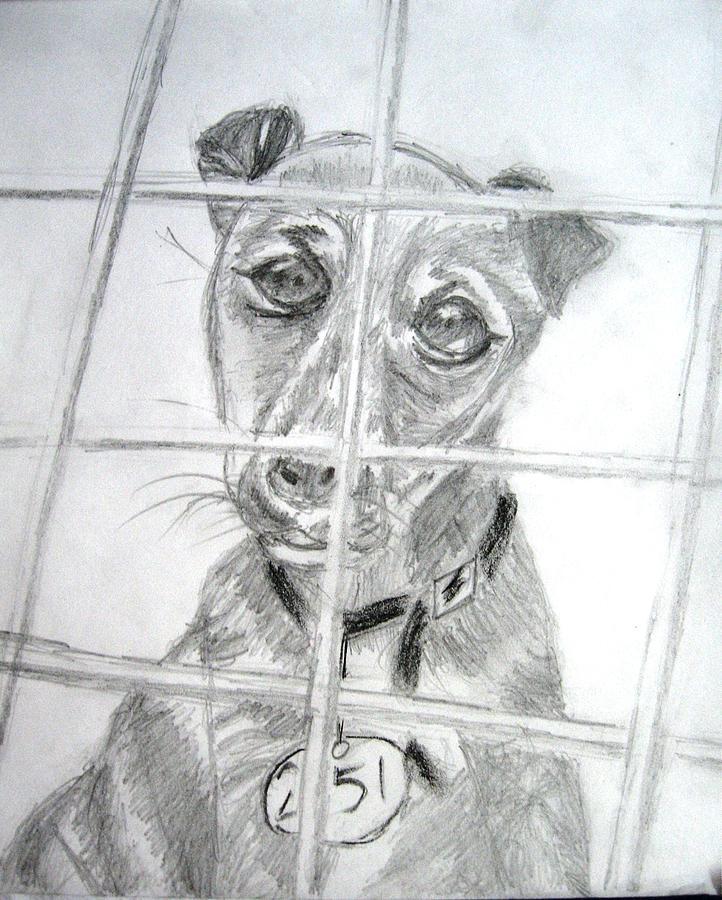 Dog Painting - Animal Dogs by Soumyadeep Nag