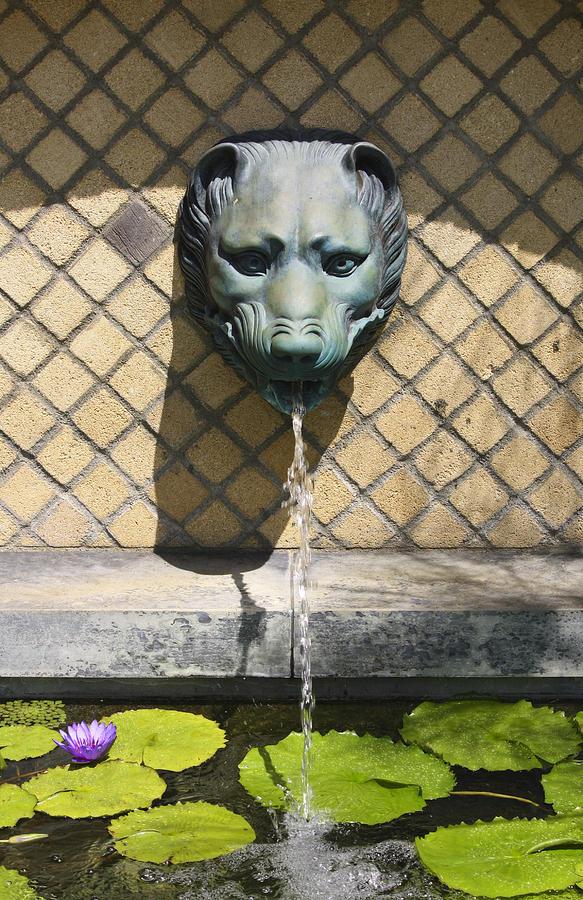J Paul Getty Photograph - Animal Fountain Head by Teresa Mucha