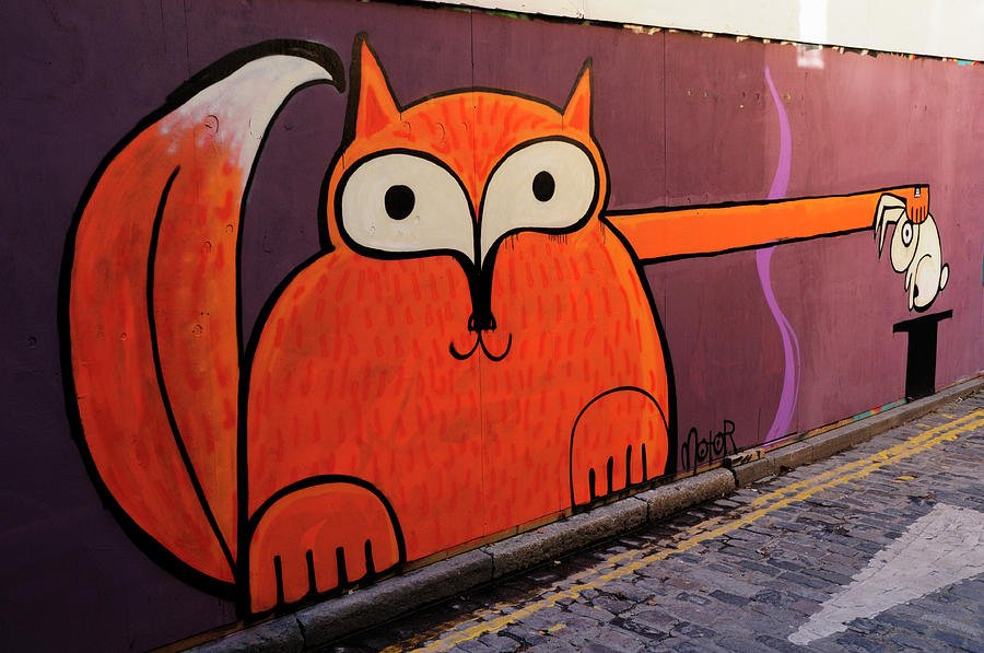 Street Photograph - Animal Magic Graffiti by Liz Pinchen