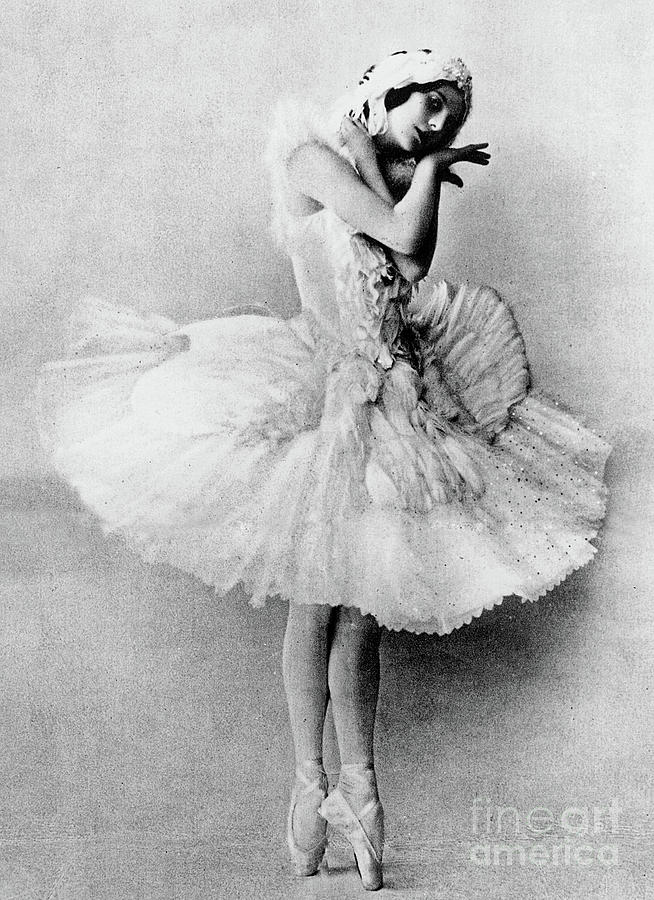 Grace Photograph - Anna Pavlova In The Role Of The Dying Swan by Russian School