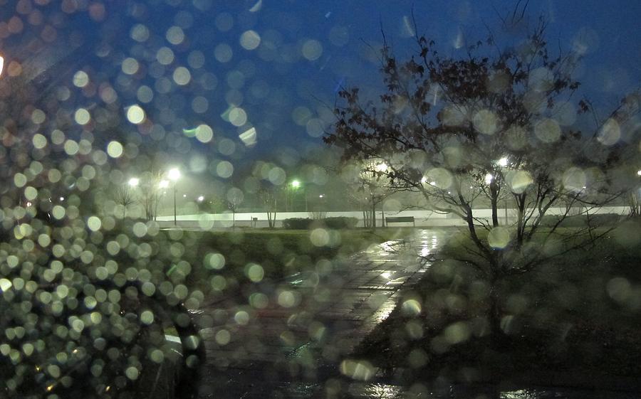 Rain Photograph - Annapolis After The Rain by Valia Bradshaw