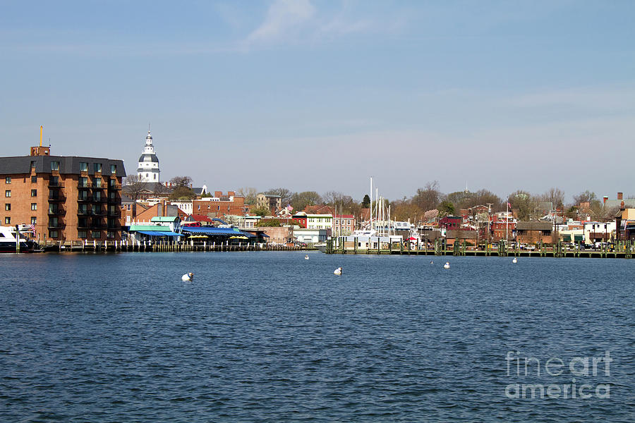 Annapolis City Skyline by Steven Frame