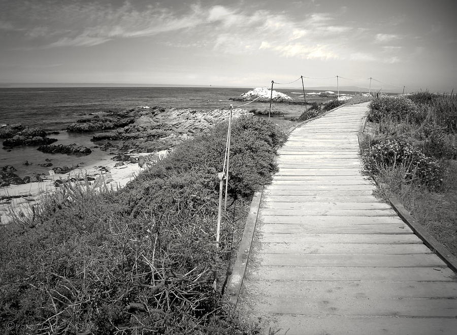Asilomar Photograph - Another Asilomar Beach Boardwalk Black And White by Joyce Dickens