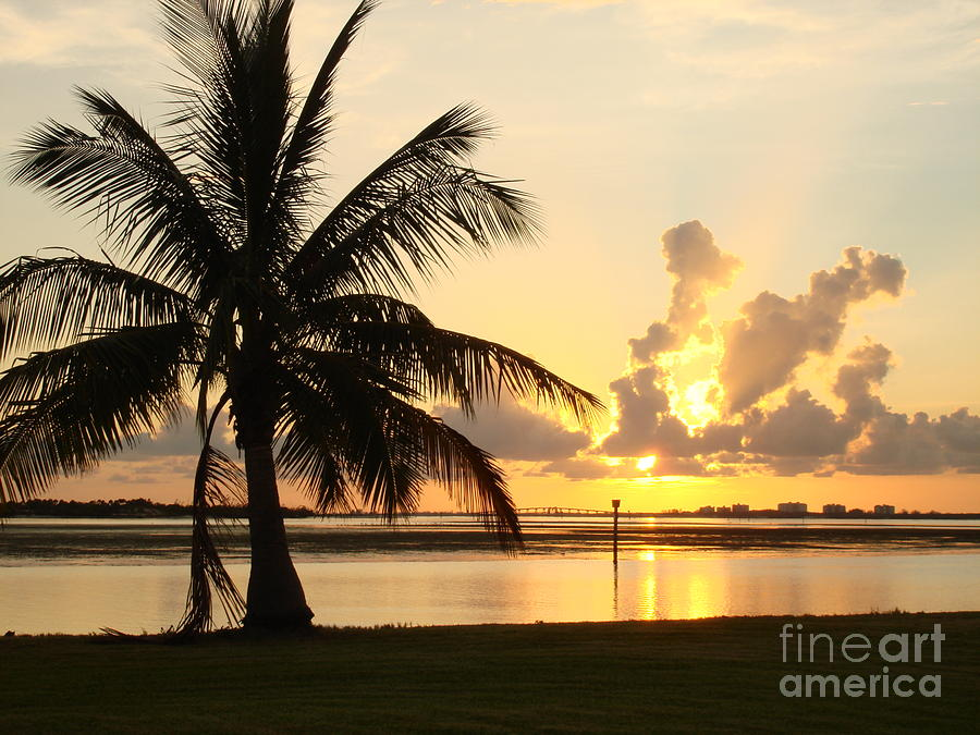 Sunset Photograph - Another Day In Paridise by Robyn Leakey