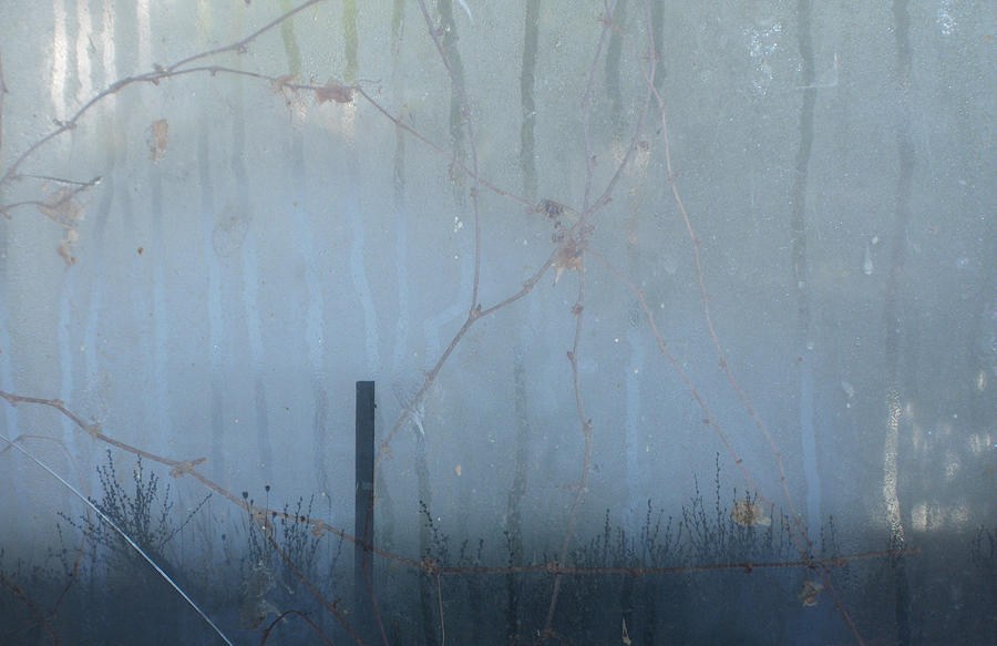 Fog Photograph - Another Rainy Day by Rebecca Cozart