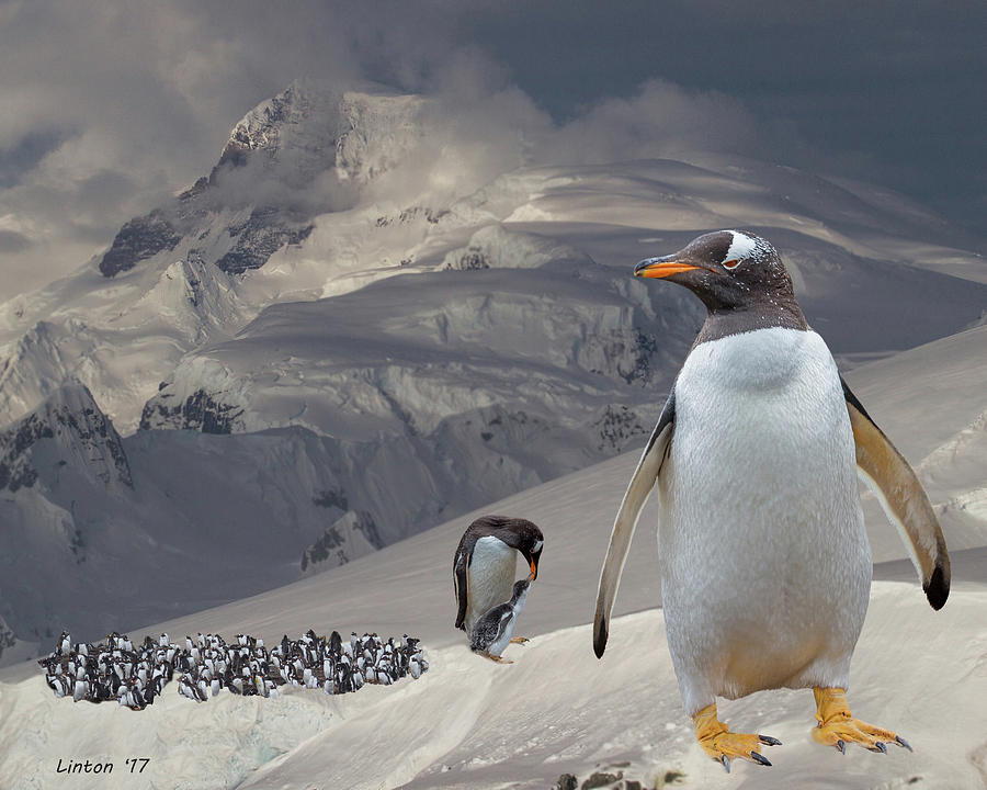 ANTARCTIC MAGESTY by Larry Linton