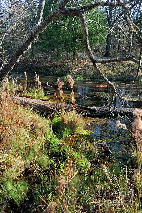 Landscape Photograph - Antelope Springs Ix by Ron Cline
