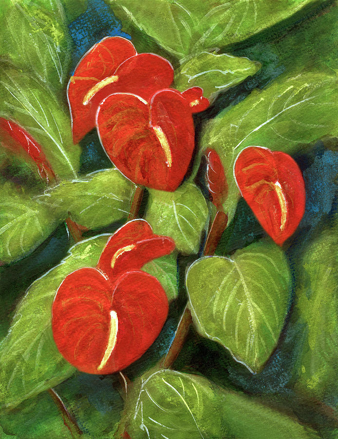 Anthurium Painting - Anthurium Flowers #231 by Donald k Hall