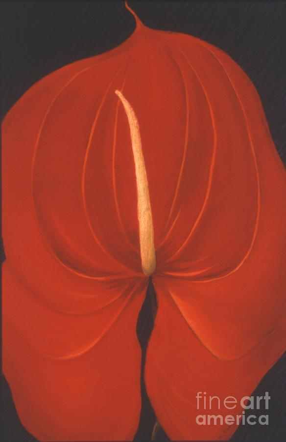 Anthurium Painting - Anthurium by Mary Erbert