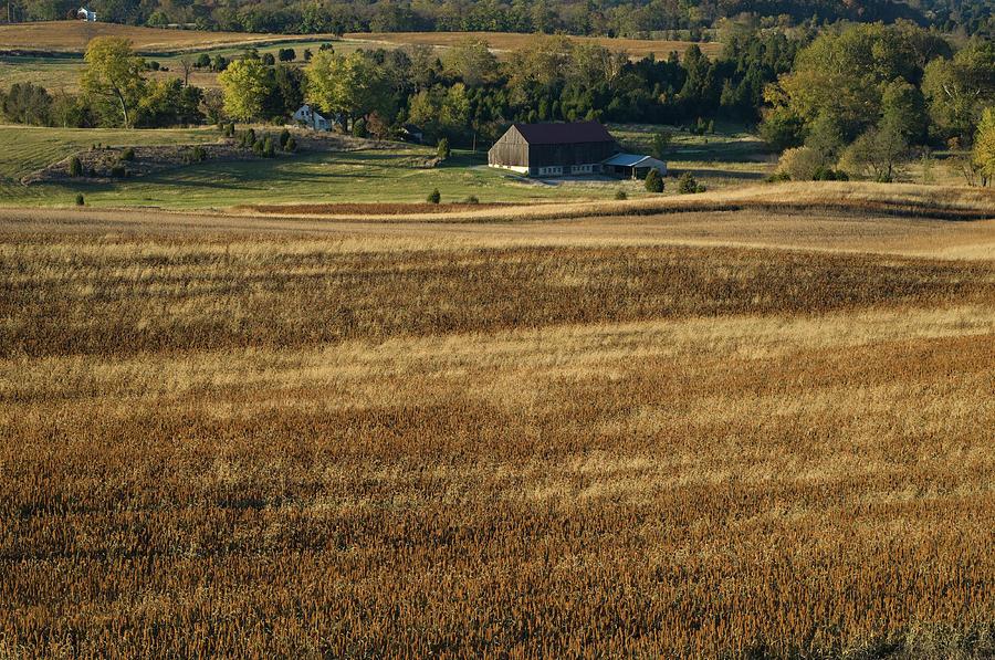 Antietam Battlefield, Sharpsburg, Maryland by James Oppenheim