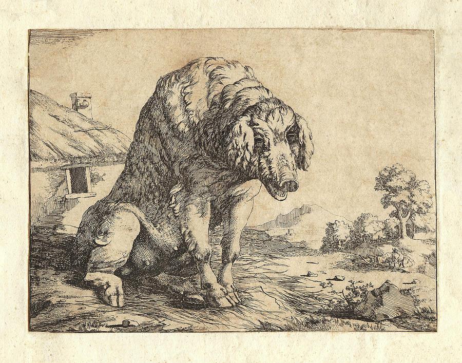 Antique Engraving Of A Pig Digital Art