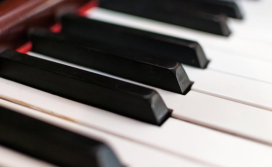 Piano Key Photograph - Antique Piano Keys by Bradley Hebdon